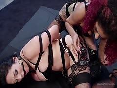 Daisy Ducati's Lesbian Electro-Dungeon.