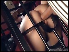 Impressive cock-loving brunette is sucking a huge black dick in the cage